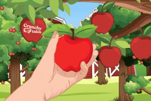Apple Picking   CrunchyTales