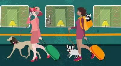 Holydays With A Dog In UK | CrunchyTales | Stefania Tomasich Illustration