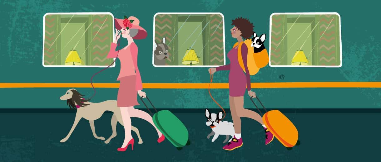 Holydays With A Dog In UK | CrunchyTales | Stefania Tomasich Illustration