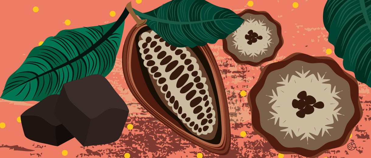 Why Raw Chocolate Is So Good For You